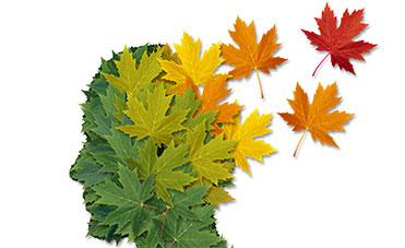 perdita di memoria in autunno