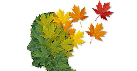 profilo uomo perdita di memoria in autunno