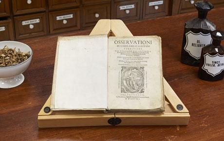 Osservationi Girolamo Calestani